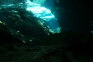 cave_looking_out