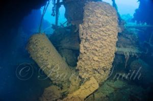 torpedoes at the sara